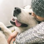 犬を飼い始める前に、必ずチェック!「時間・お金・環境・頼れる人」は大丈夫ですか?