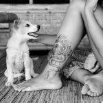 【愛犬 足跡 タトゥー】愛犬との絆を体に刻むドッグタトゥーの流行と歴史