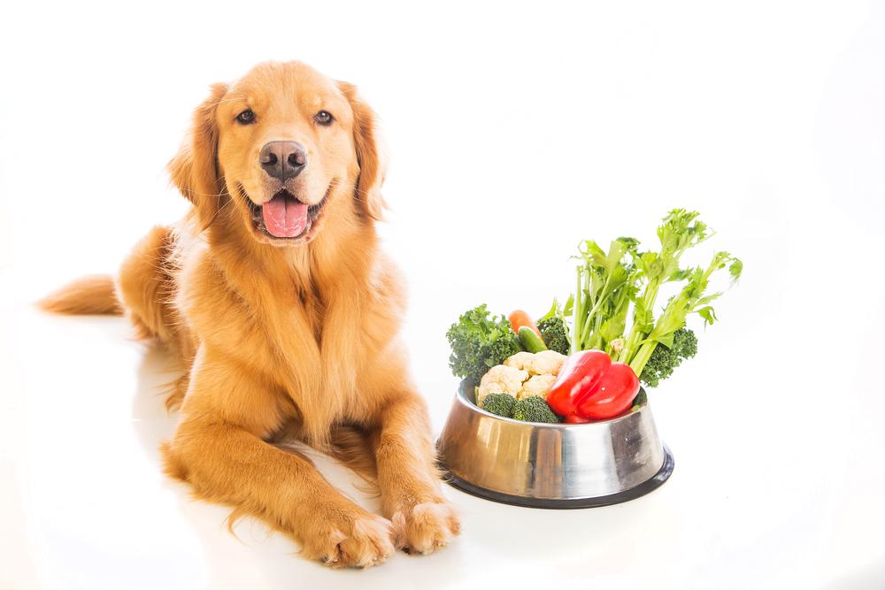 食材栄養素