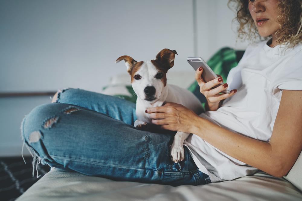 ペットの体調管理アプリ